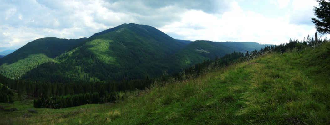 Nejvyšší horu Vrancei - Goru (1784 m) pokrývá tmavá kleč