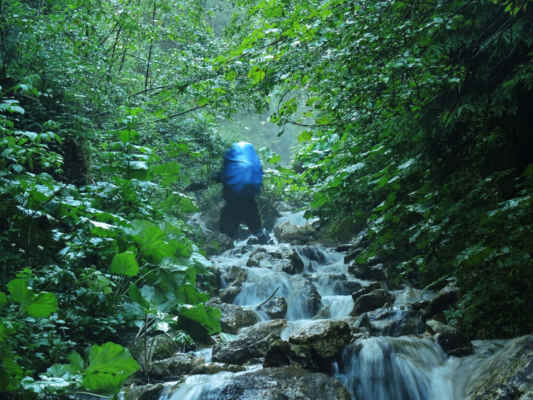 Tohle je prosím turistická značka, vede přímo potokem. Veselé klopýtání po mokrých kamenech.