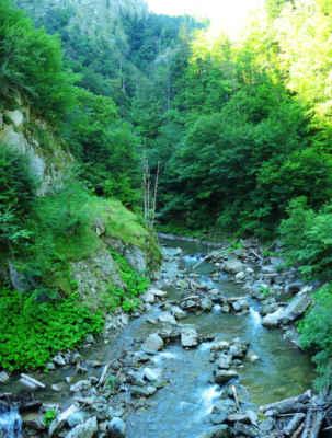 Začínáme pohořím Vrancea (čti Vranča), v divokém údolí říčky Tişiţa. T.č. přísná rezervace se vstupným a návštěvníma hodinama. Naštěstí v boudě v osm večer nikdo nebyl, tak jsme do hor pronikli bez problémů.