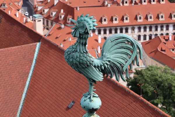 Chrám svatého Víta, Václava a Vojtěcha - vyhlídka z věže.