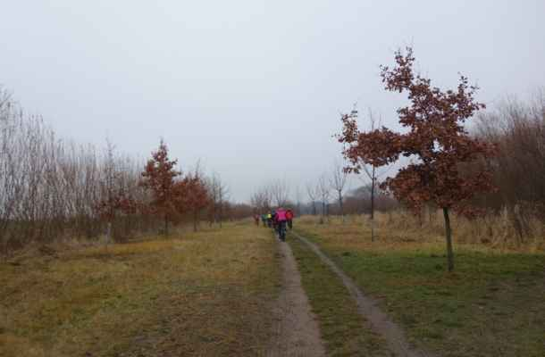 Cestou ke Strahovskému rybníku.