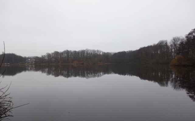 Břevský rybník.
