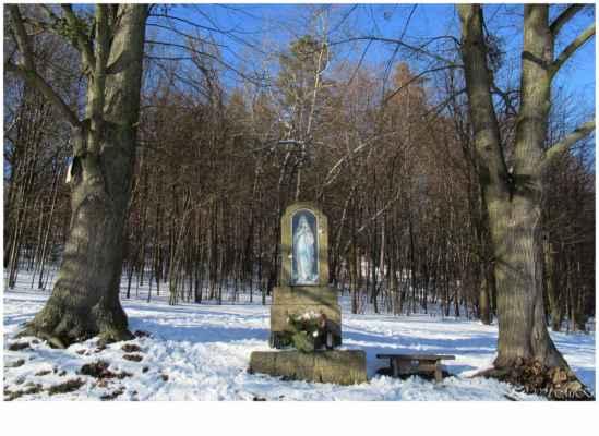 ...okraj lesa Lipůvka