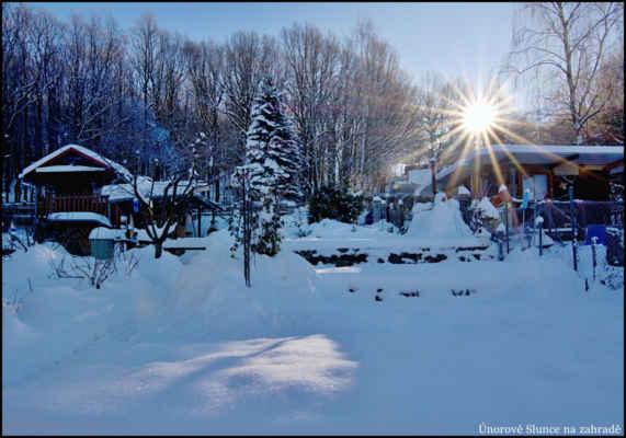 Středohoří - Sluníčkovej pozdrav ze zahrady..