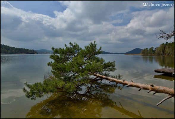 Máchovo jezero - Láká to ke koupání,ale zdání klame,voda je jak nůž..-:)