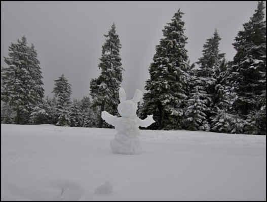 Krušné hory - Na Klínovci připadlo pár cm čerstvého sněhu,takže matroše na zdejšího strážce,je tu víc než dost..